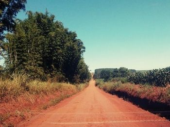 A estrada da MS-379, que passa pelo comunidade do Bom Fim. Foto: Rede Social Zenaide Espíndola
