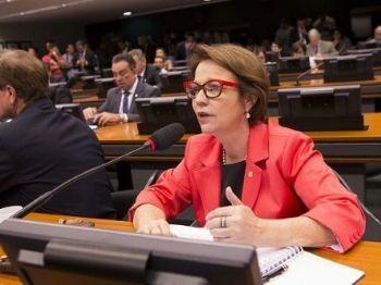 Comissão realizou 12 reuniões, nove audiências públicas e um seminário público - Foto: Arquivo Correio do Estado