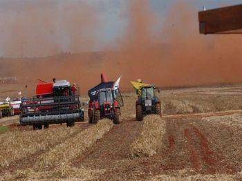 (Safra agrícola/Arquivo/Agência Brasil)