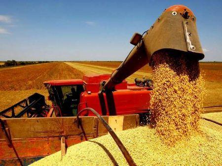 Produtores rurais tem disponível R$ 623.528.332,18 para que possam investir em suas propriedades – Divulgação