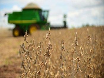 Cerca de 85% da área de soja concluiu colheita - Foto: João Carlos Castro/Famasul