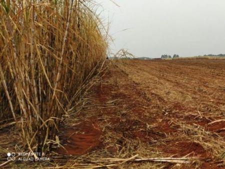 A área incendiada totalizou 132 hectares. Foto: PMA/ Divulgação.